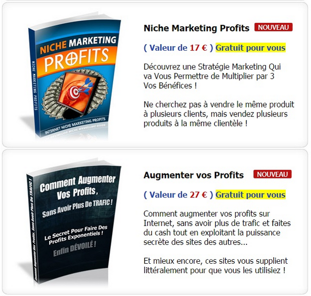 Niche Marketing Profits - Augmenter Vos Profits - ABCJOBNET - Réseau de Formations de Travail en Ligne